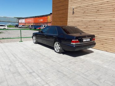Mercedes-Benz S 420 1997 в Лебединовка
