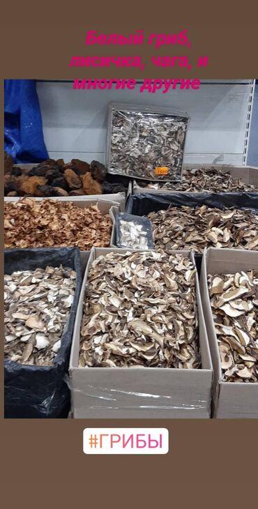 Другие продукты питания - Кыргызстан: Белый гриб лисичка чага