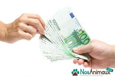 Financijska pomoc (zajmovi izmedu samostalne ponude)
