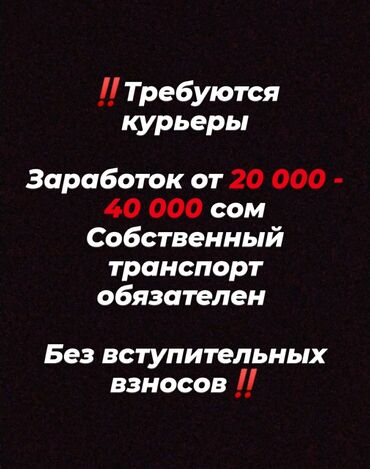 Рукава для водителей бишкек - Кыргызстан: Водители-курьеры