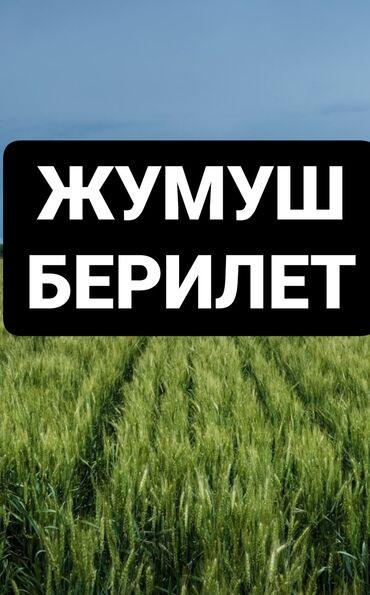 Поиск сотрудников (вакансии) - Бишкек: Тез АРАДА соода тармагына кыздар керек 18-47 жашка чейин аксессуары