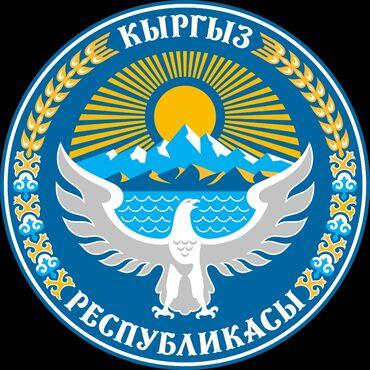 заглушка для ремня безопасности в Кыргызстан: Ищу работу охранника сутки через двое