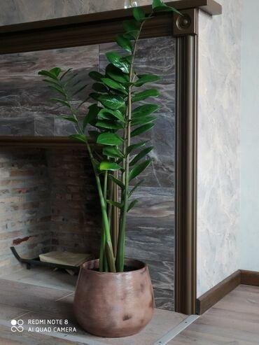 Керамический горшок сделан из высококачественной глины в классическом