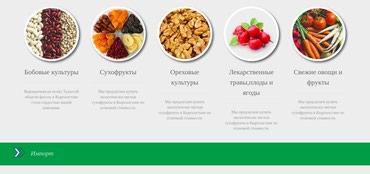 Делаем сайты для продвижения вашего бизнеса или личного блогинга в Бишкек