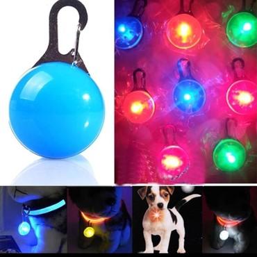 Продаются светящиеся кулоны для выгула собак в темное время суток