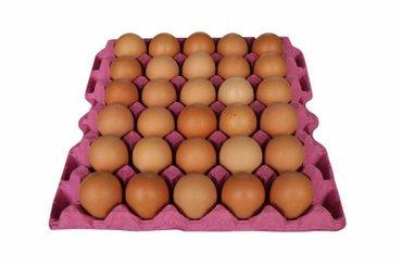 Bakı şəhərində Yaponka yumurtası satılır. Sortu tamam cır balacalardandı, rəngi zil q