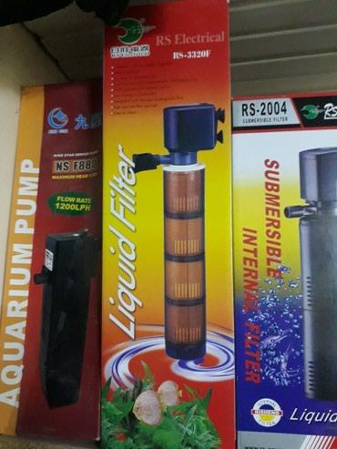 filtir - Azərbaycan: 4qubkali filtir 30 wat bawqalarida var