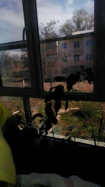 Недвижимость - Кант: Индивидуалка, 3 комнаты, 75 кв. м Животные не проживали
