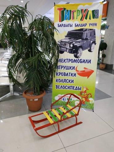 Санки Кыргызстан Россия можно в в Бишкек
