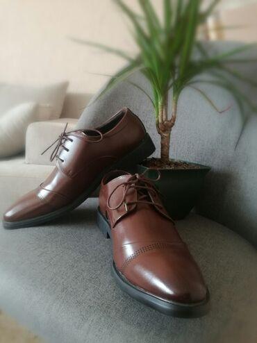 Zneske pantalone legend - Srbija: Muške elegantne braon cipele. Nove,plaćene 4500. Cipele su