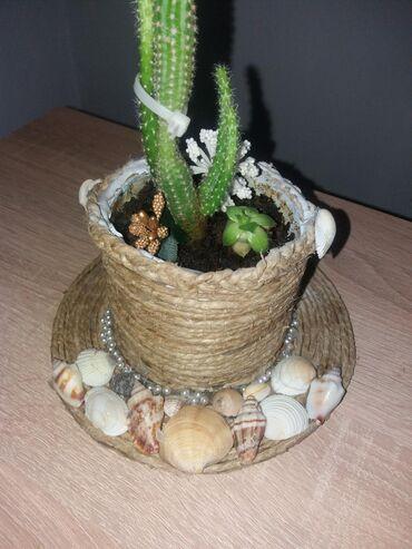 Kućni dekor - Mladenovac: Ručno izrađena pletena korpica sa kaktusom. Za ostale ručno izrađene