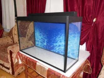 Bakı şəhərində 120 litrelik teze akvarium 6mml wuwenin qalinliqi