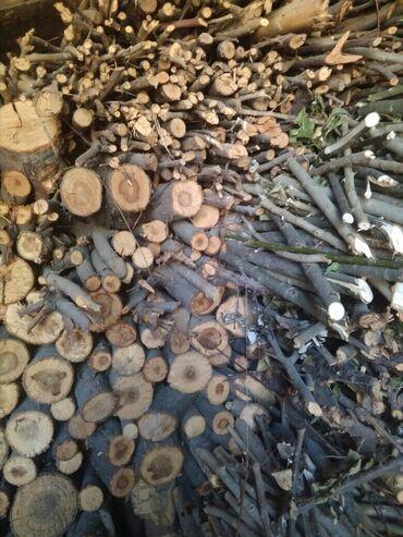 Все для дома и сада в Кок-Ой: Продаю дрова сухие