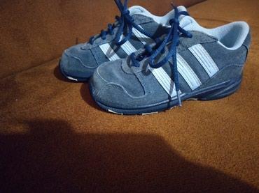 Adidas-patikice-kozne - Srbija: Decije Adidas kozne patike velicina 26, duzina gazista 16,5cm