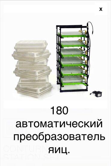 Купить телефон эйчтиси - Кыргызстан: Инкубатор. Автоматический преобразователь яиц.   Вы можете связатьс