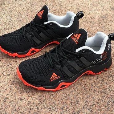 adidas barikada в Кыргызстан: Adidas terrex