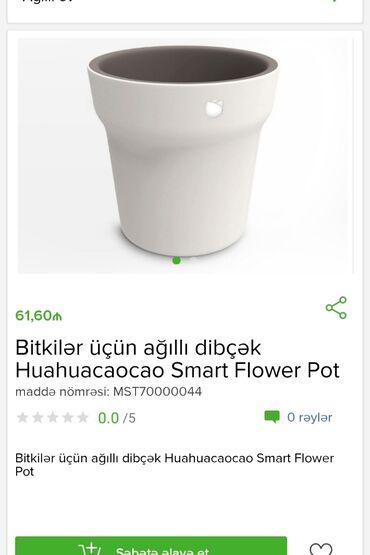 Ev və bağ Qobustanda: Bitkilər üçün ağıllı dibçək Tam zəmanətləEvdən birbaşa sifarişPulsuz