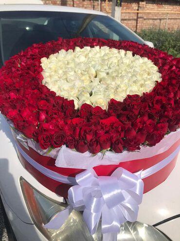 Акция -501 роза   Таких цен еще не было !  -Самая выгодная цена