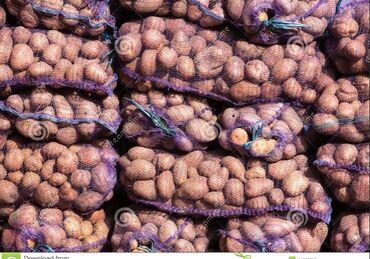 Плиты перекрытия цены - Кыргызстан: Продаю картошку 80т цена договорная