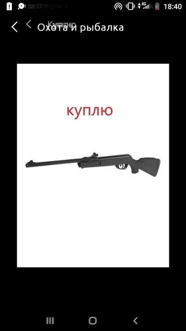 Охота и рыбалка - Кыргызстан: Тир сатып аламарзанырак