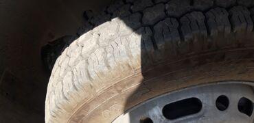 китайские грузовые шины в бишкеке в Кыргызстан: Дельфин 2.7 маторы менен сатылат