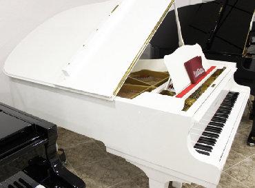 arenda kvartira studiya в Азербайджан: Arenda Röyal Ve PianinolarQiymet Razılaşma Yolu İle Arenda Röyal Ve