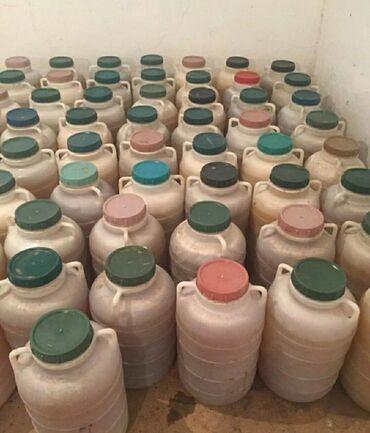 Чистый горный мёд из Токтогула, можете приехать попробовать, чистый