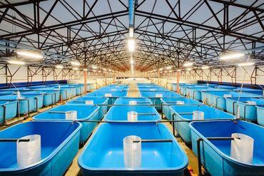 6095 объявлений: Изготавливаем чаши бассейна, емкости для установки замкнутого водоснаб