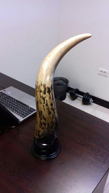 Bakı şəhərində Oriqinal ingiltərədən alınandı fil dişi suvineri  vatçap-