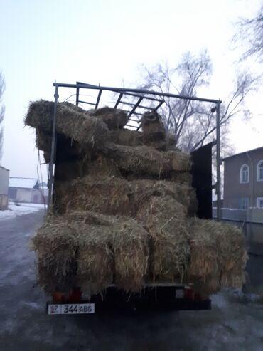 эндик чоп фото в Кыргызстан: Чоп сатам 160сом 1кост