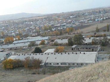 ферму металлическую 7м в Кыргызстан: Продаю Ферму Село Ворнцовка от города 12 км