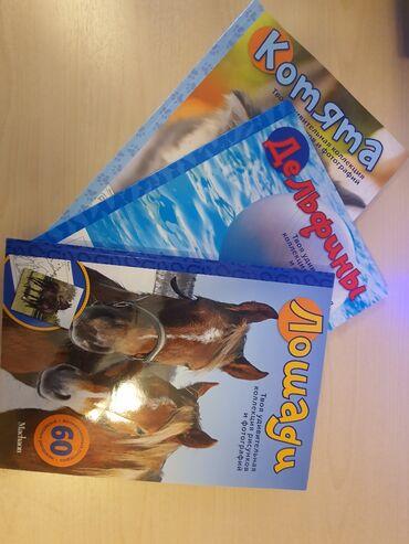Книги, журналы, CD, DVD - Кыргызстан: Книги для детей