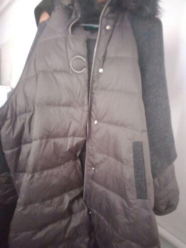 Личные вещи - Пригородное: Куртки