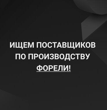 1 грамм золота цена кыргызстане in Кыргызстан   ЦЕПОЧКИ: Ищем поставщиков по производству форели (форель) сотрудничество на
