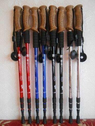 Сноуборды - Кыргызстан: Треккинговые палки, скандинавские палки в спортивном магазине