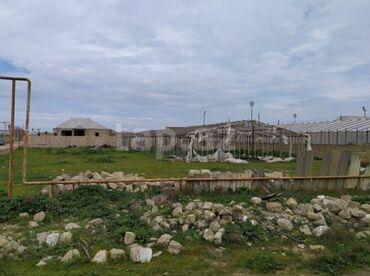 Dübəndida: Satış 16 sot Kənd təsərrüfatı mülkiyyətçidən