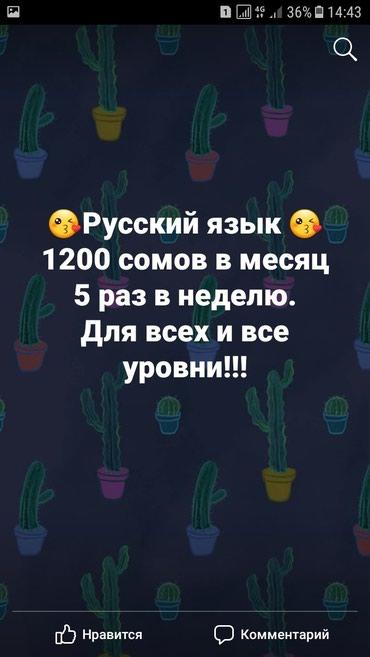 Курсы Русского языка. . в Бишкек
