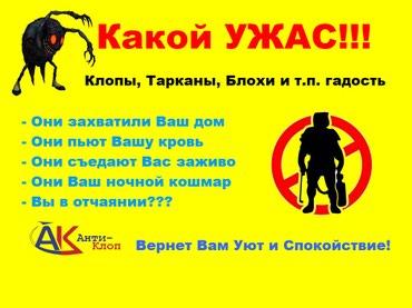 Уничтожение Клопов,Тараканов,Блох и в Бишкек