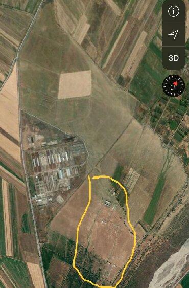 Продаю ферму в 15 км от центрального рынка г. Токмок, вблизи калиновки