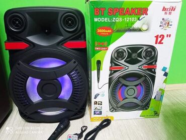 Elektronika - Pozarevac: Blutut Zvucnik Karaoke ZQS-12103 sa mikrofonom i daljinskimSamo 6000