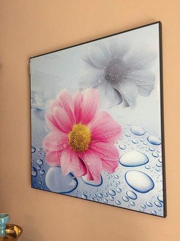 Картина-Ромашка под стеклом,размер 60 х 60 см в Бишкек