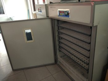 Инкубатор 528яйц , автомат г. бишкек, ул. гагарина39, тел. в Бишкек