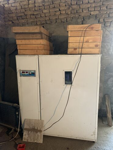 самсунг а 51 цена ош in Кыргызстан   SAMSUNG: Срочно продаётся инкубатор