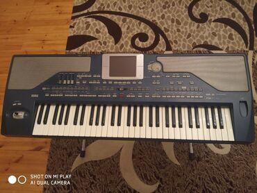 Синтезаторы - Азербайджан: Korg pa800