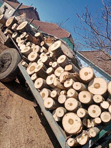 Na prodaju drva topola za vise informacije na broj telefona ili