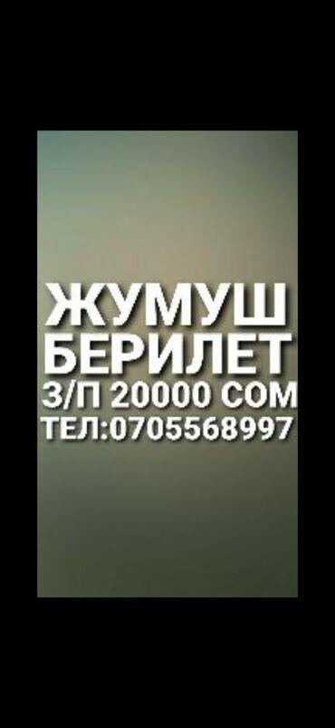 Работа - Бишкек: Продавец-консультант. 5/2