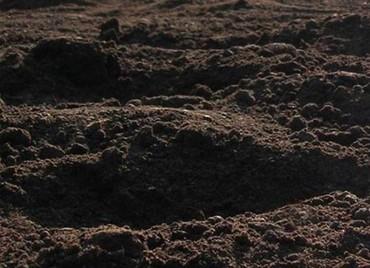 срв бишкек цена в Ак-Джол: Чернозём плодородный для сада и для газона Продаю чернозем с доставкой