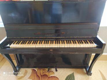 Musiqi alətləri - Masallı: Piano və fortepianolar