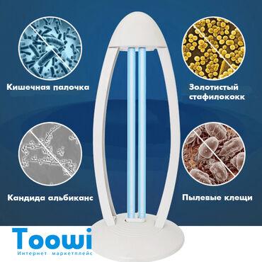 сколько стоит мед в бишкеке в Кыргызстан: Бактерицидная лампа 38W в стильном корпусе, модель 2020г.Лампа с