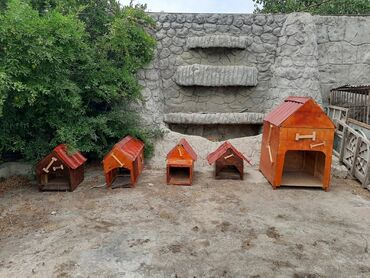 bu üçün sterilizator in Azərbaycan | TIBBI AVADANLIQ: Karkazi taxdadan yanlari alti usdu dikden ve lakllanib teze